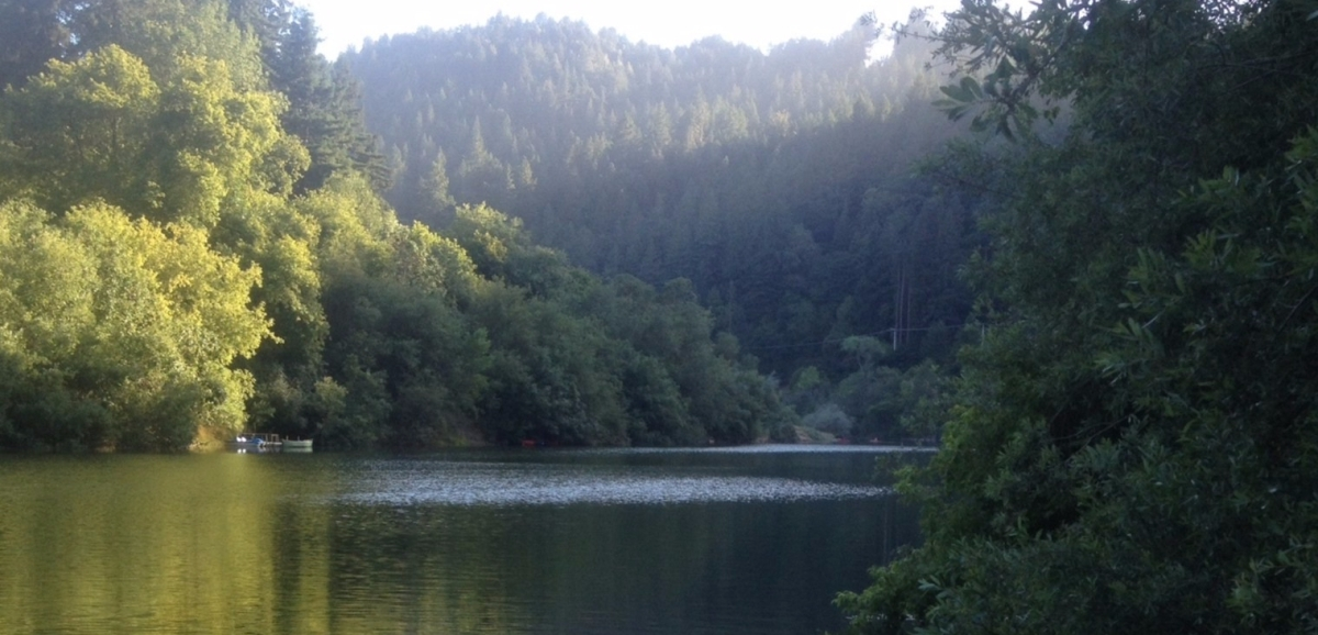 Russian River Local Advice Blog