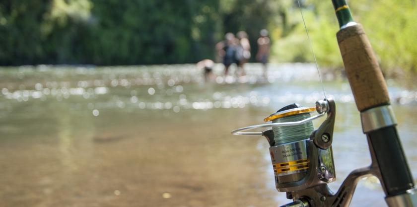 fishing-2948694_1920